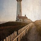 Pigeon Point Lighthouse by Michelle Callahan