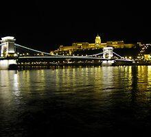 Chain Bridge & Royal Palace, Budapest by wiggyofipswich