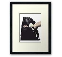 This is Dog - Image only Framed Print