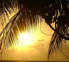 Jamaican Sunset by Mowny