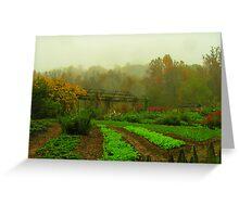 Garden at Bethabara Greeting Card