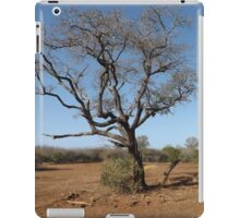 African Landscape iPad Case/Skin