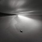 Shoreline by Joel Tjintjelaar