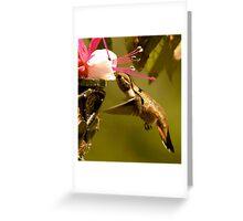 Ahhhhhhh...Nectar Greeting Card