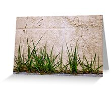 Sidewalk Grass Greeting Card