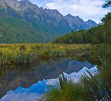 Milford Track - Mirror Lake by Yukondick