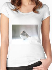 Adorable snow bird in his element Women's Fitted Scoop T-Shirt