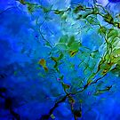 Windy Day - Reflection of a Tree by Debbie Pinard