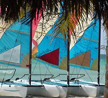 Colorful Sails by Mowny