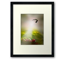 Easter Sun Rays Framed Print