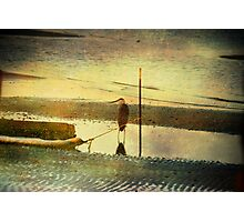 Alone on the Shore Photographic Print