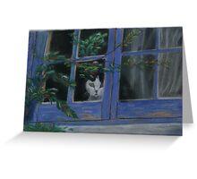 Kitty in the window Greeting Card