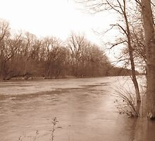 Muddy Waters in Sepia by Connie Bunke