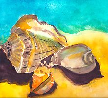 Shells in Paradise by Sally Griffin