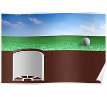Ball on Green Poster