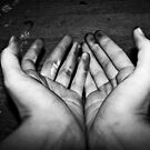 working hands  by Morgan Koch