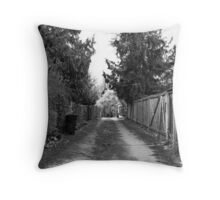 Lonely Trail Throw Pillow