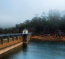 """Mundaring In Mist"" by Heather Thorning"