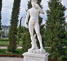 Statue of David by MONIGABI