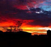 York Farm Sunrise by Paul Fulwood