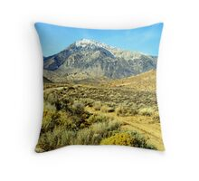 """""""Back Country Road"""" Throw Pillow"""