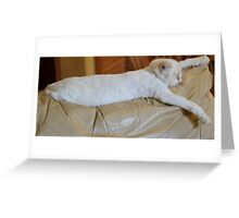 power naps rule! Greeting Card