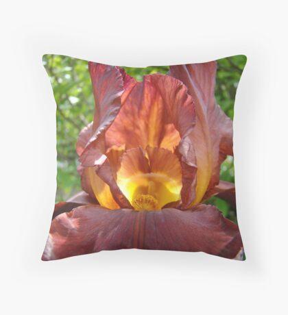 Iris Flowers art Colorful Irises Floral Baslee Troutman Throw Pillow