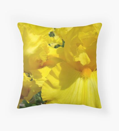 Yellow Irises Flowers art Floral Baslee Troutman Throw Pillow