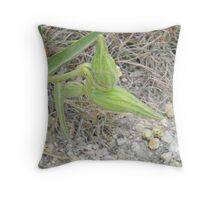 Antelope Horns Seed Pods Throw Pillow