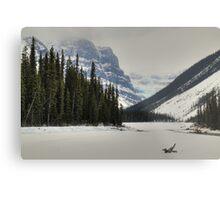 Mountains and glaciers Metal Print
