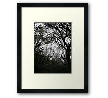 A Walk in the Clouds #2 Framed Print