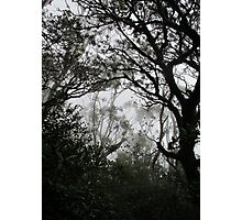 A Walk in the Clouds #2 Photographic Print