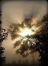 ~ A Blazing Haze ~ by LeeoPhotography