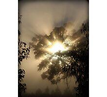 ~ A Blazing Haze ~ Photographic Print
