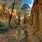 Golden Gully - Hill End by GailD