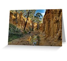 Golden Gully - Hill End Greeting Card
