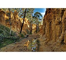 Golden Gully - Hill End Photographic Print