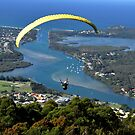 Paragliding off middle brother mountain.N.S.W. Australia by Heabar