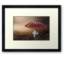 There is a fairy under the toadstool Framed Print