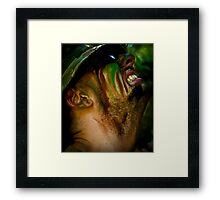 When the tigers broke free Part 2 Framed Print
