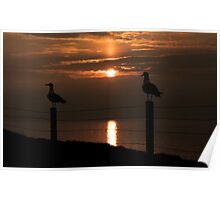Peel Sunset Poster