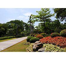 Ayala Triangle Garden Photographic Print