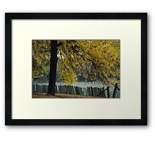 Hill End Yellow Autumn Framed Print