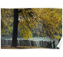 Hill End Yellow Autumn Poster