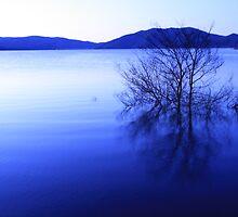 blowering dam in blue by jade adams