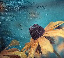 melancholia-c02 by Aimelle