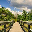 Boardwalk by TJ Baccari Photography