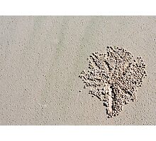"""Sand Ball Sculptures"" - Fraser Island Photographic Print"