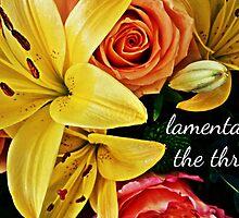 lamentation by gatheringwonder