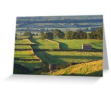 Morning Light near Askrigg - Yorkshire Dales Greeting Card